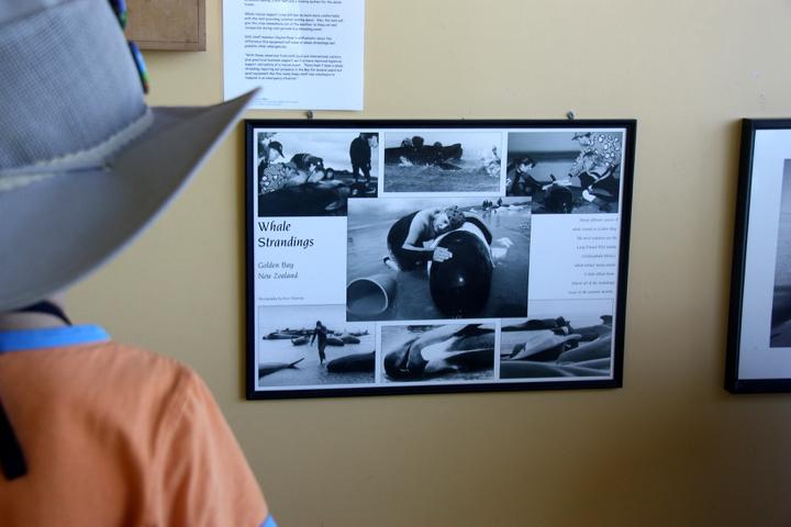 58GradNord - Elternzeit in Neuseeland - Farewell Spit Museum