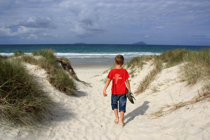 58GradNord - Elternzeit in Neuseeland - Sohn in den Dünen