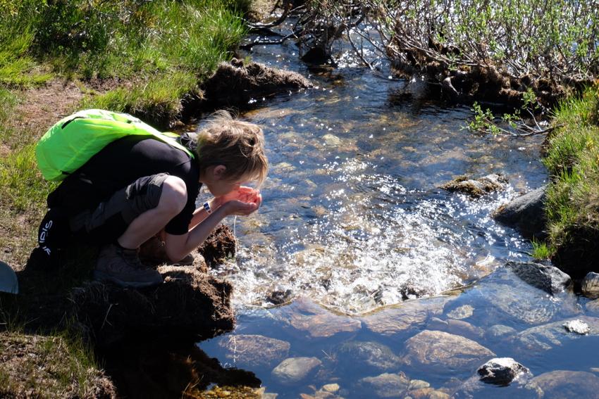 Leckeres Fjällwasser