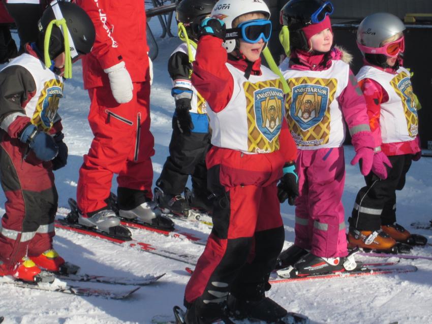 Skifahren in Schweden - Schischule