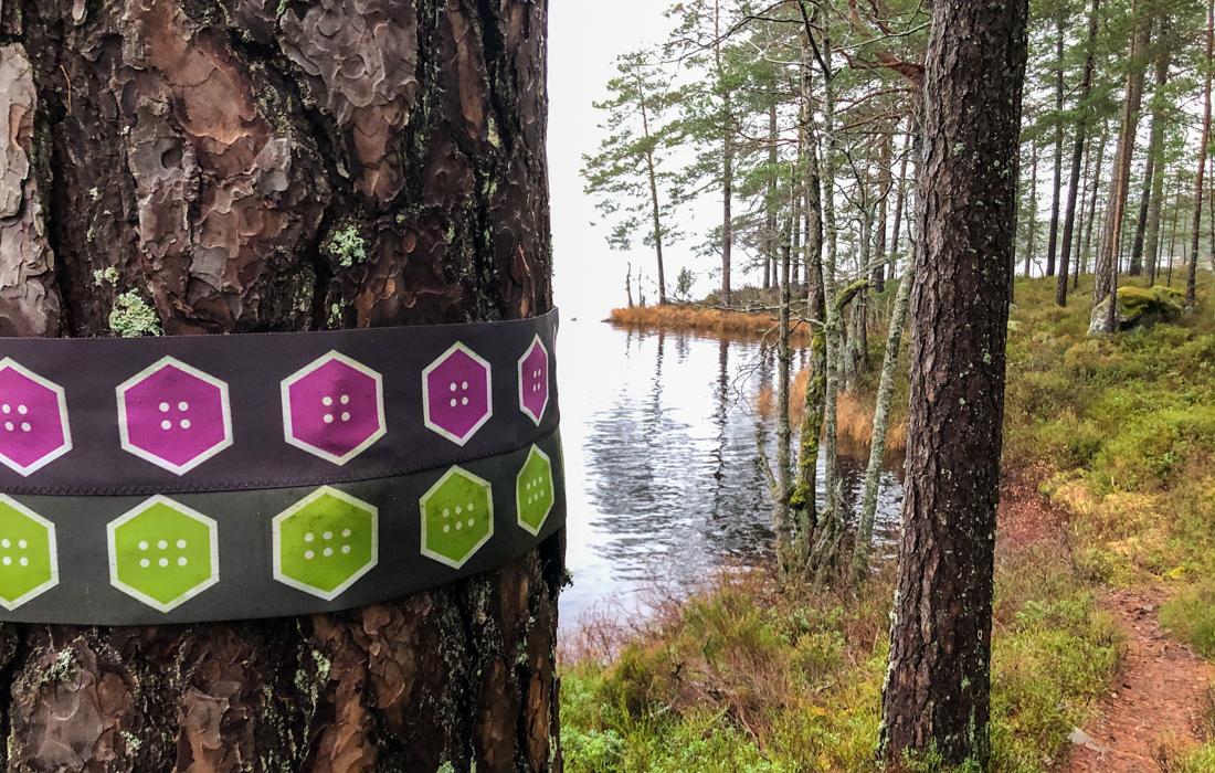 58GradNord Tiveden Nationalpark Wegmarkierungen