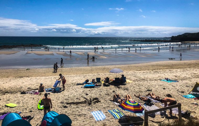 58 Grad Nord - Kiwi-Tagebuch - Tawharanui Beach Hochsaison