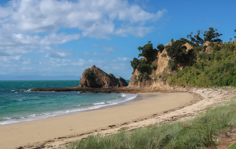 58 Grad Nord - Familienauszeit - Rotoroa Island - Einsame Strände - Ladies Bay