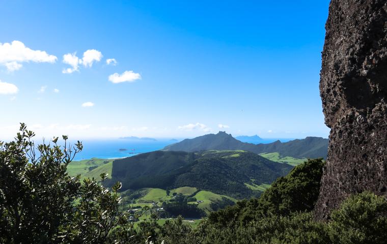 58 Grad Nord - Familienauszeit Neuseeland - Whangarei Heads - Ausblick vom Mount Manaia