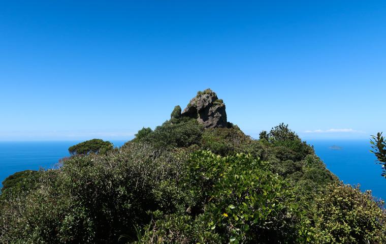 58 Grad Nord - Familienauszeit Neuseeland - Whangarei - Te Whara Summit