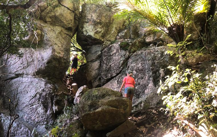 58 Grad Nord - Familienauszeit Neuseeland - Whangarei Te Whara Track