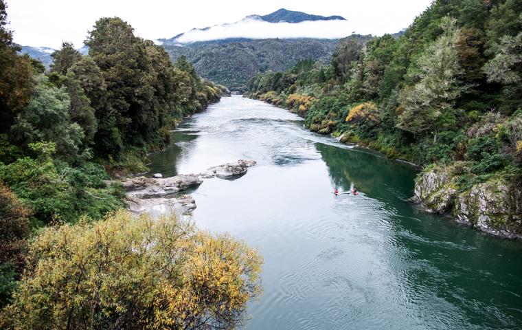 58 Grad Nord - Neuseeland im Herbst - Lower Buller Gorge Scenic Reserve