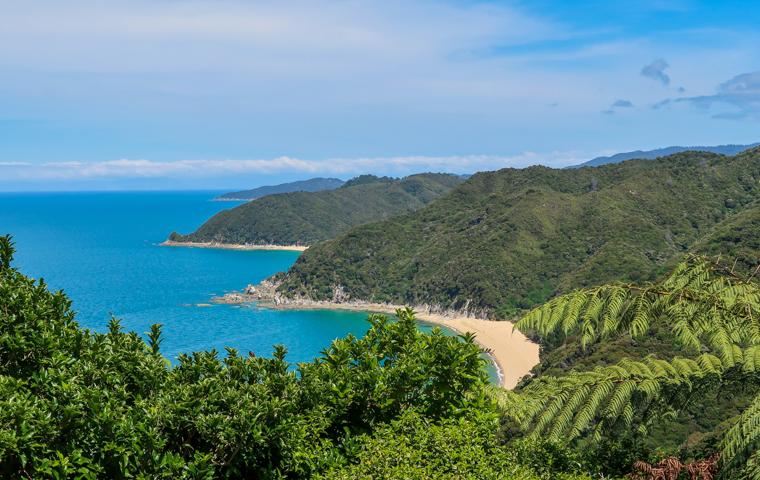 58 Grad Nord - Neuseeland - Golden & Tasman Bay - Abel Tasman Coast Track - Amazing View