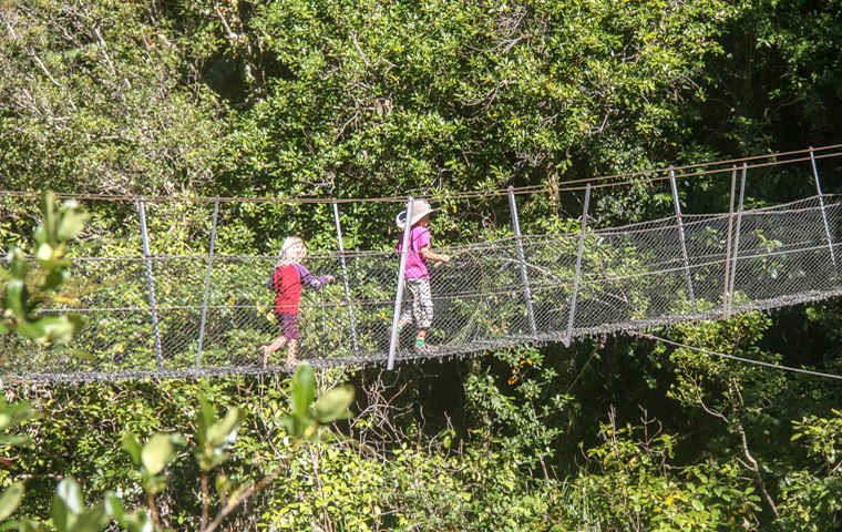 rad Nord - Neuseeland - Golden & Tasman Bay - Wainui Falls - Suspension Bridge