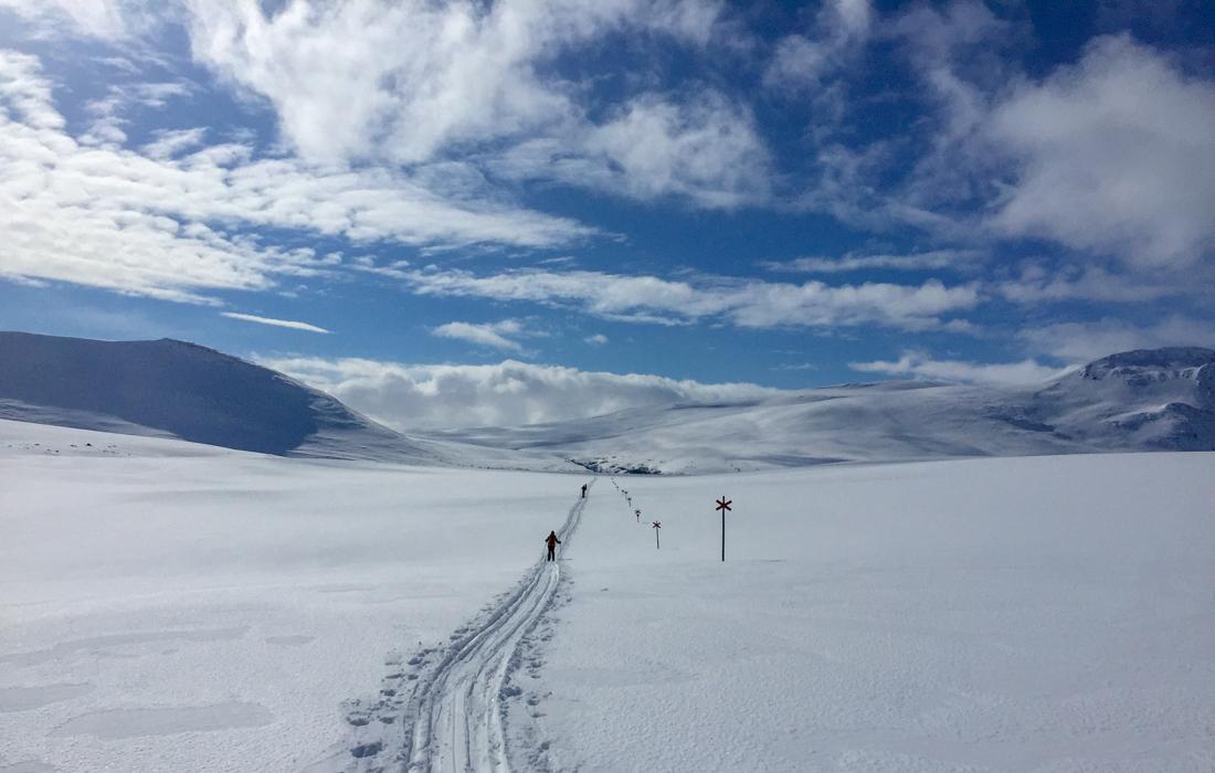 58 Grad Nord -Skiwandern mit Kindern in Lappland - Kungsleden Winterwegmarkierungen