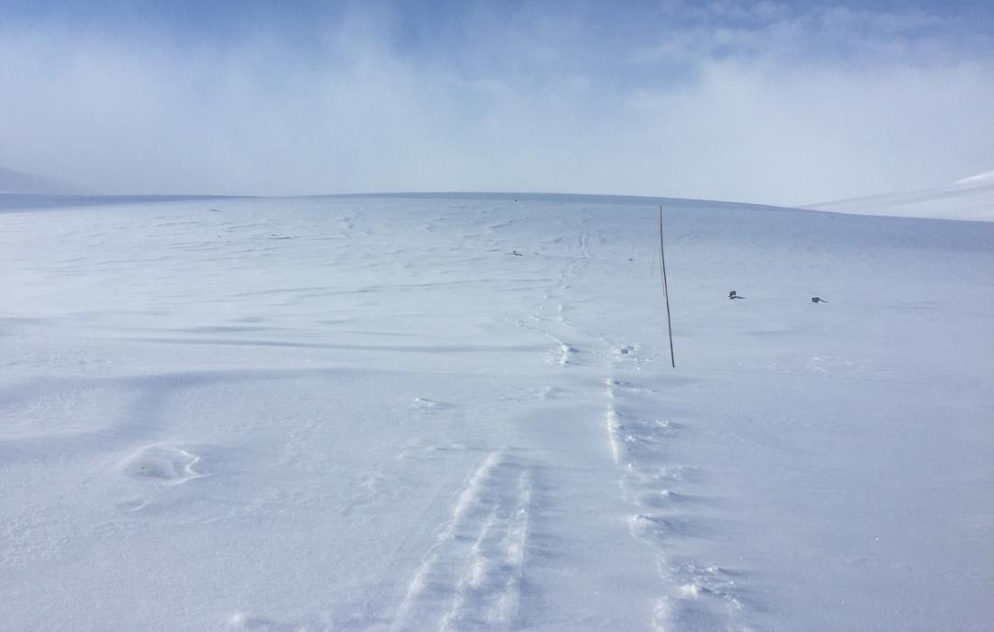 58 Grad Nord -Skiwandern mit Kindern in Lappland - Kungsleden - fehlende Markierung