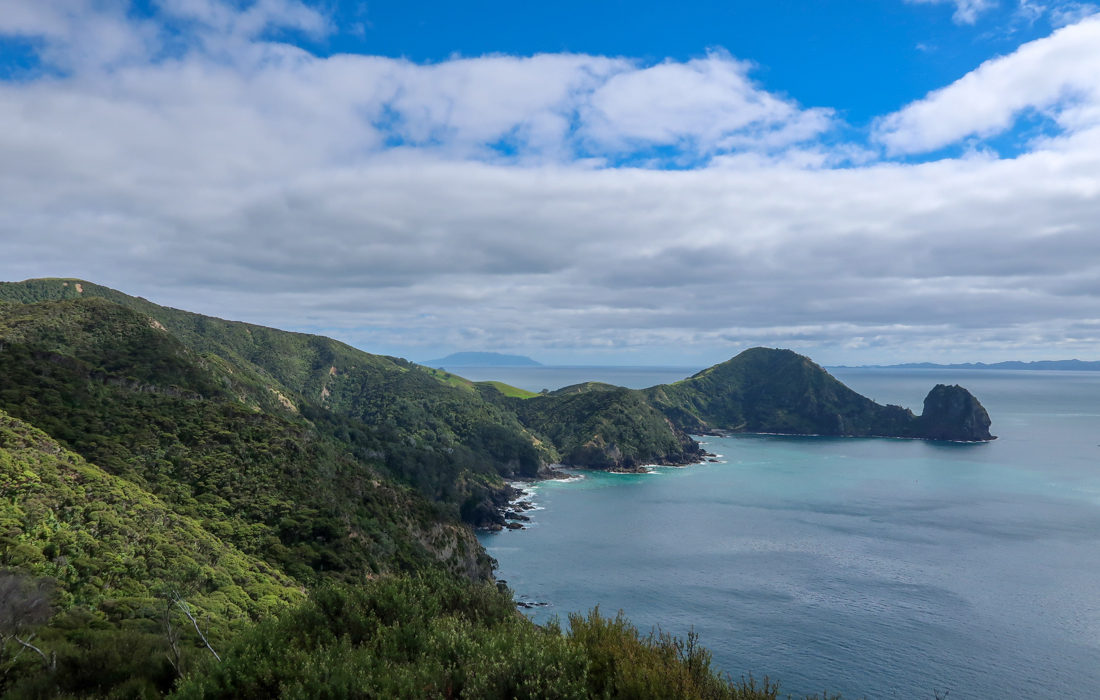 58 Grad Nord - Coromandel Coastal Walkway - Lookout North View