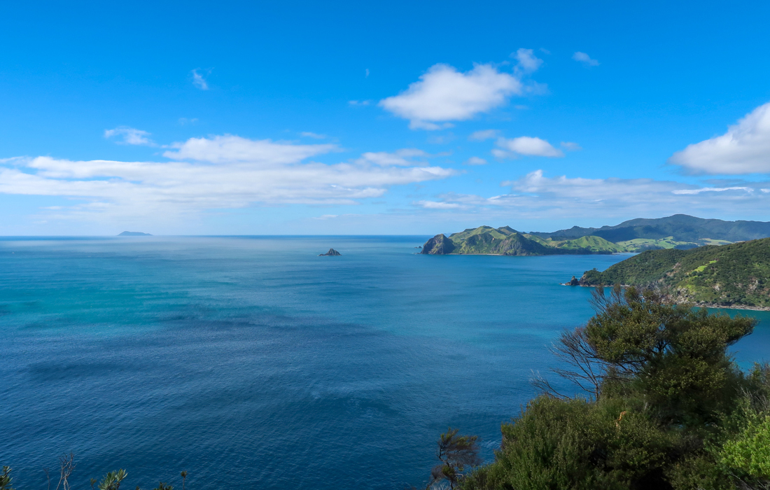 58 Grad Nord - Coromandel Coastal Walkway - Lookout View South