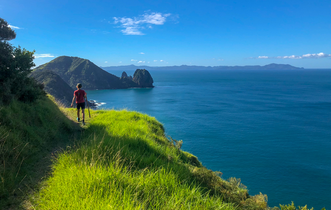 58 Grad Nord - Coromandel Coastal Walkway - Walking views