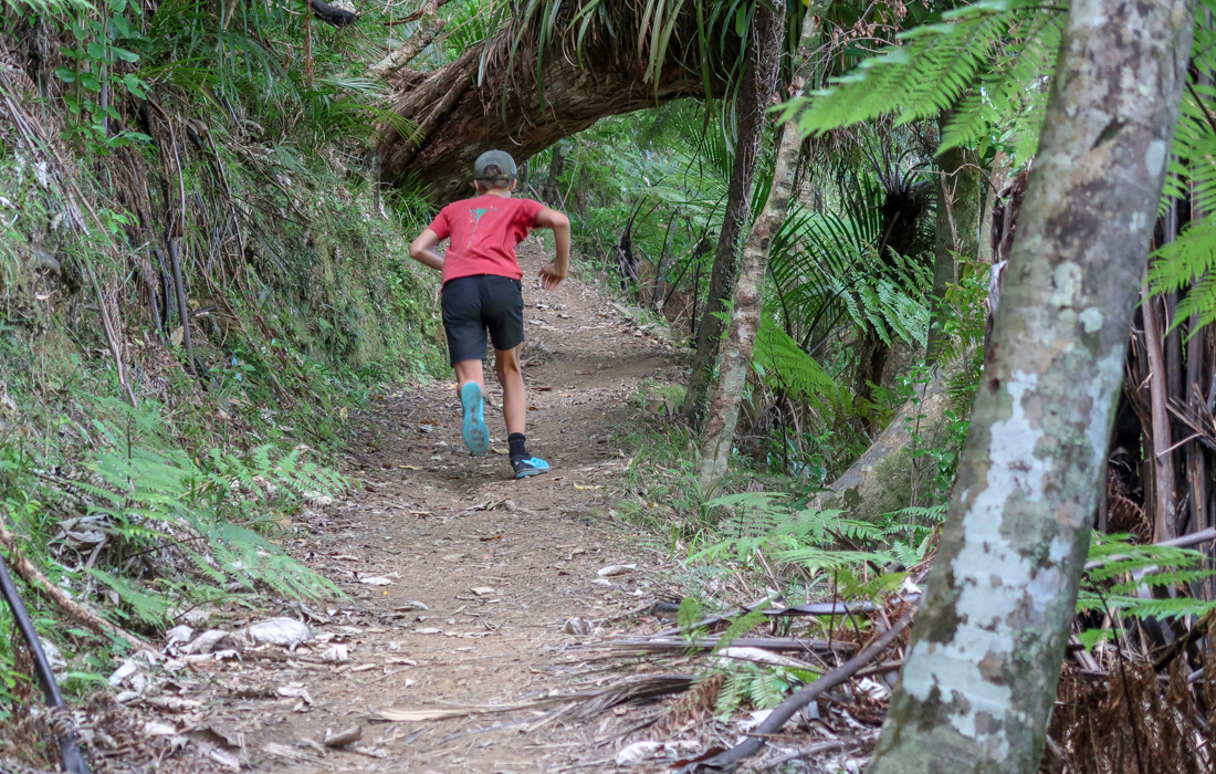 58 Grad Nord - Coromandel Coastal Walkway - Running up the hill