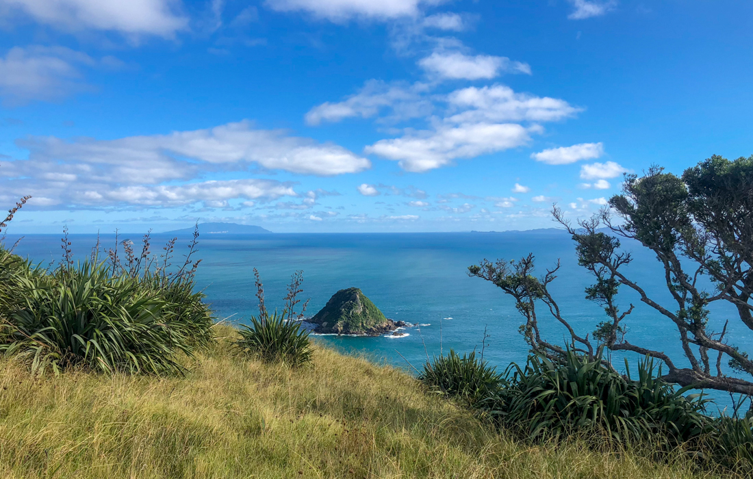 58 Grad Nord - Coromandel Coastal Walkway - Little & Great Barrier Islands