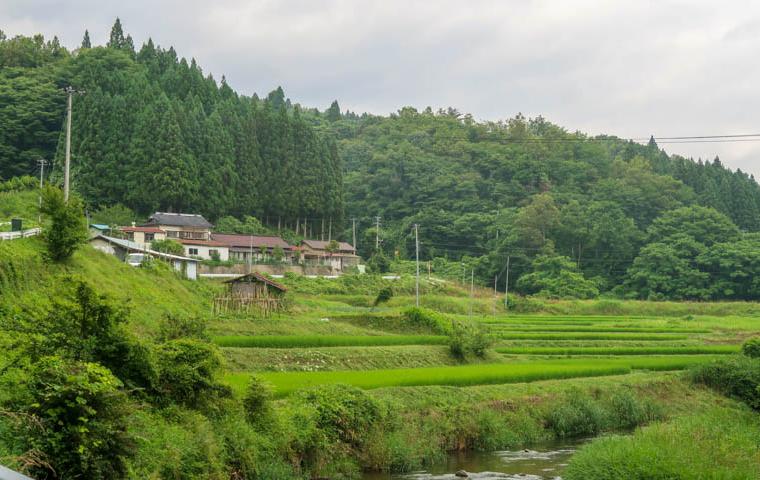 58 Grad Nord - Fotoparade 2018-2 - Landschaft - Reisfelder Japan